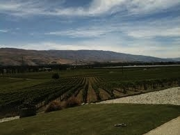 Central Otago Pinot Noir Celebration, end of January-beginning of February