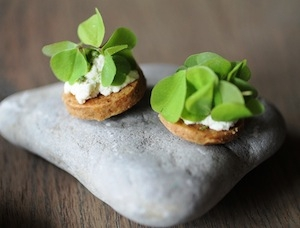 Butter biscuit with cheese and wood sorrel. In de Wulf's 2 tasting menus are105 and 125 euro (165 and 205 including wine pairing)(photo byPassione Gourmet)