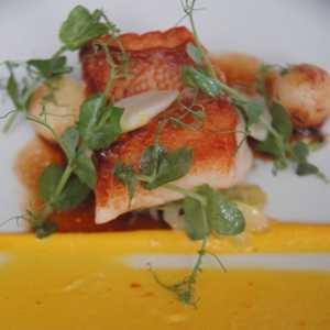 Pesce rosso cotto alle erbe, cavolo rosso, aglio confit e rouille, ristorante Lysverket