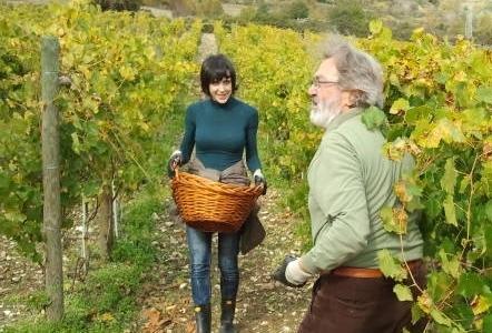 EMBEDDED. L'autrice del nostro pezzotra le vigne di Casadonna (foto Il Centro di Pescara)