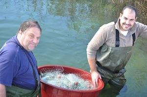 Vito e Paolo Sacco, father and son, eel fishermen