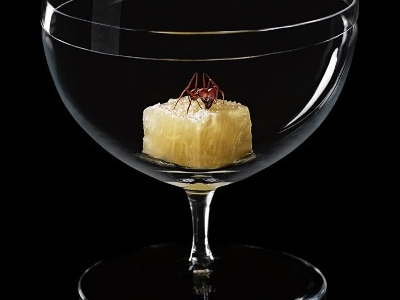 Ants and grapefruit, a great match according to the paulista chef