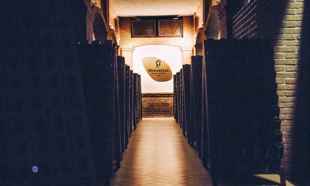 Mirabella, missione Pinot Bianco. E un brindisi ai 40 anni