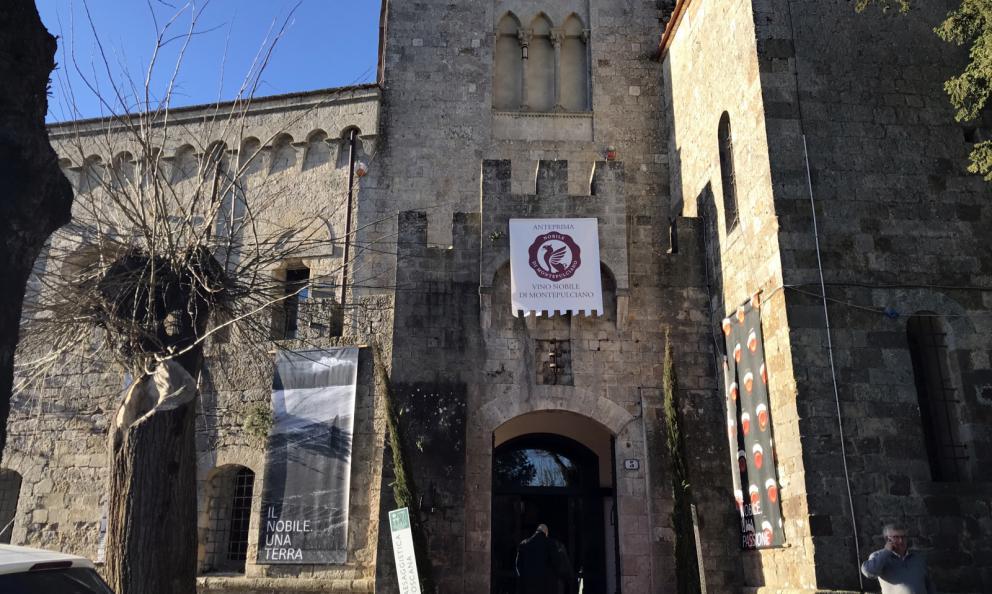 """Il Nobile di Montepulciano studia """"da grande"""". Grazie al Prugnolo Gentile"""