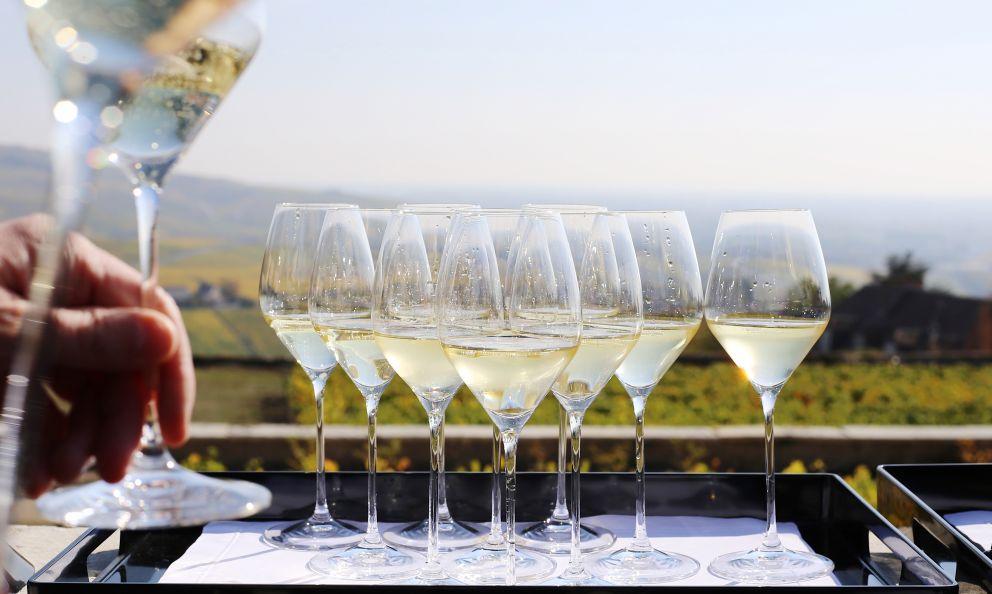 Degustazione di Champagne con vista sui vigneti