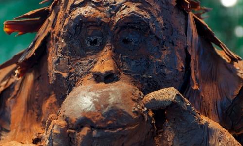 Particolare dell'Orang-Outang (a grandezza naturale) di Roger