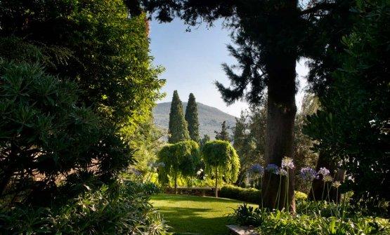 Altre immagini del magnifico parco della villa