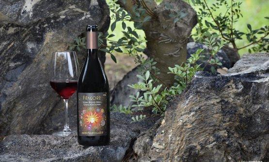 Fragore è il nuovo vino di Donnafugata, prodotto dai vitigni sull'Etna