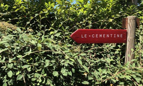 Le Cementine, the restaurant inside H-Farmin Ca&