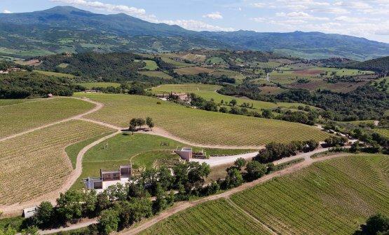 La tenuta di Allegrini denominataSan Polo, a Montalcino in Toscana