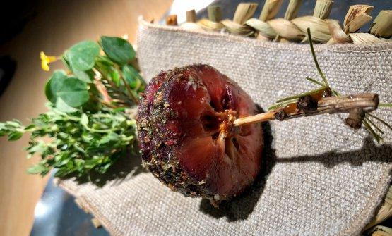 Nobilis pinecone cooked on the cab Pigne di pino nobilis cotte nel guscio, un piatto che fa il verso alcorn on the cob degli americani. La pigna è grigliata con burro affumicato, faggio di olio di pino mugo, petali di rosa canina sottaceto, ciliegie fermentate e spezie. Si alterna l'assaggio tra pigna e il bouquet di erbe in cima (timo, pino, acetosella). Un piatto difficile, che non sempre esce inmenu