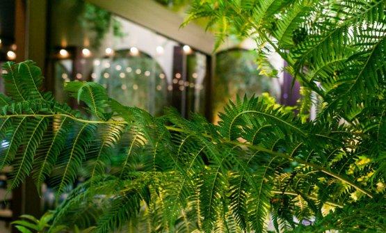 Particolare del giardino interno
