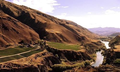 Central Otago, Central e basta per i neozelandesi, occupa la parte più meridionale dell'Isola Sud del Paese. E' qui che 121 piccoli produttori producono pinot nero. Con esiti alterni