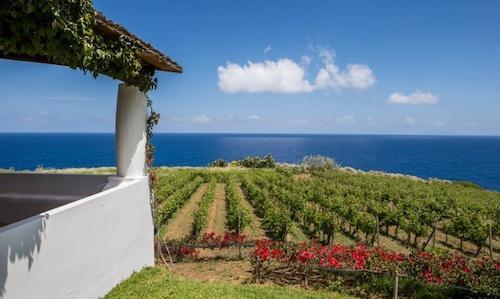 Uno scorcio felice delCapofaro Malvasia & Resort