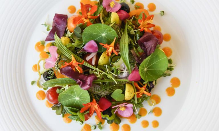Il bellissimo piatto preparato dalla Cicioni: I giardini, i campi, il mare, ossia una rivisitazione vegana della classica insalata nizzarda