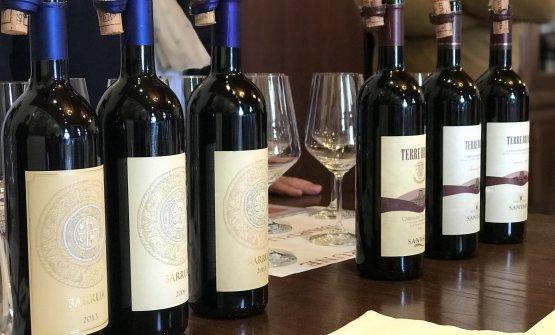 Barrua di Agripunica e Terre Brune di Santadi sono i vini bandiera delle due aziende
