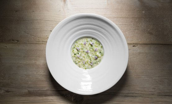 Orzotto with mountain herbs(Alex Moling)