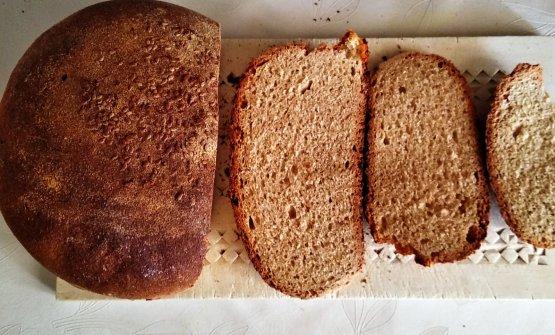Il pane di Castelvetrano