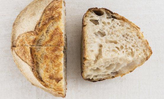 Pane(2015) Occorrerebbe un lungo contributo per spiegare l'importanzache il pane ha nella cucina di Romito e le conseguenze che questa passione ha avuto sull'alta ristorazione tutta. Uncollegaha saggiamente osservato: