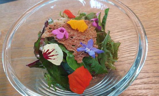 Insalata dell'orto condita al Kombucha
