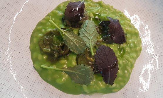 Risotto mantecato all'aglio orsino, lumache glassate, ossalide viola