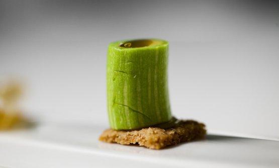 Con Zucchina trombetta torna protagonista la Liguria dei natali del Taglienti. Il piatto centrale della foto è trancio di zucchina con more di gelso ed erbe. Accanto, come per ogni piatto, si moltiplicano piatti e piattini: zucchina bollita con emulsione di polpa di zucchina; fiore di zucchina farcina; cannellone di pasta fresca con polpa di zucchina e maggiorana o tartare di zucchina con gel di escapece. I mille volti di una zucchina