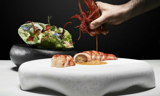 Carabiniere prawn, glazed sweetbreads, seaweed brittle with aromatic salad