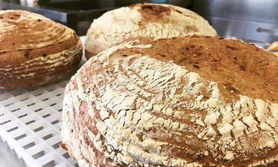 Il pane di Cuore Napoletano