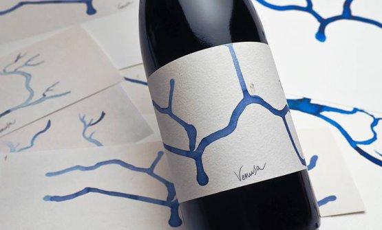 Il nuovo progetto Venusa prevede anche delle birre: come questa,artigianale e fermentata con il santonico (artemisia di laguna)