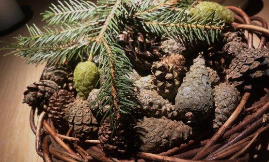 Pine tree caramel Caramello di pigna, ultimo assaggio del menu.E' tipoun fudge, ma unito apesto di formiche e polvere di pino. Unforte gusto balsamico