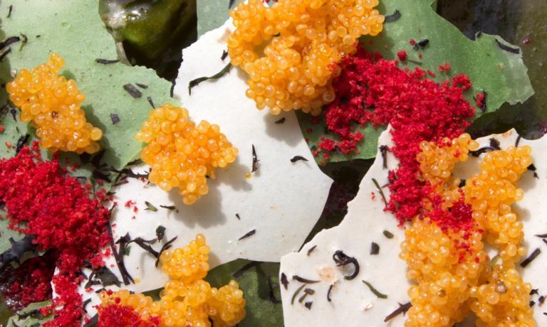Valle tra le Ande.Avocado e amaranto. In carta ora da Central (foto Central Comunications-BrickD)