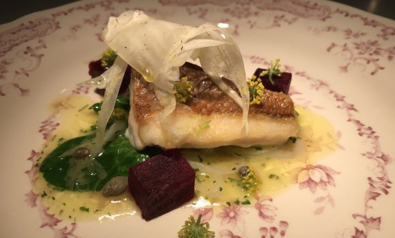 Grilled snapper with spinach, onion, beetroot, fen