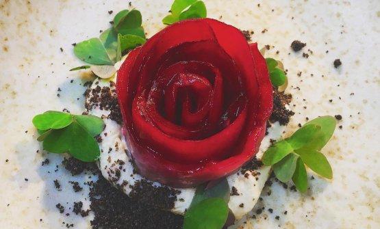 Rosa di melanzana