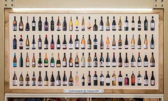 Panoramica sui vini 2018 proposti da Cuzziol