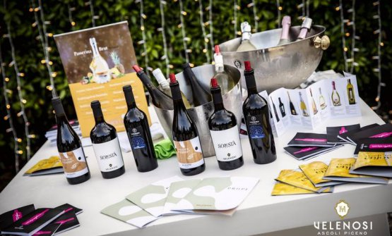 Alcuni dei vini prodotti dall'azienda marchigiana