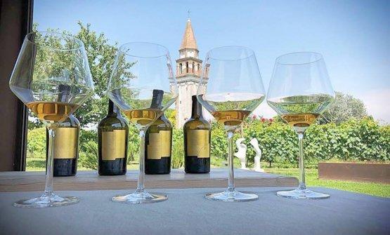 Il vino Venissa