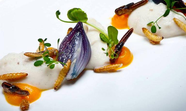 Uno dei piatti del ristorante Bugs & Lunch di Gent, in Belgio