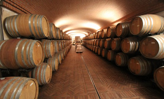 La cantina di affinamento dei vini
