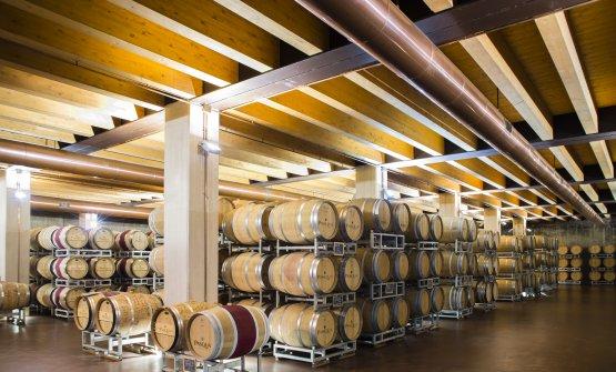 In cantina si dovrà trovare spazio per i vini che non non sono venduti a causa del blocco del settore Horeca