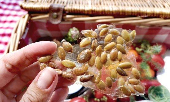 Tuiles di semi di zucca, sesamo bianco e sesamo nero accompagnati da una crema al cumino