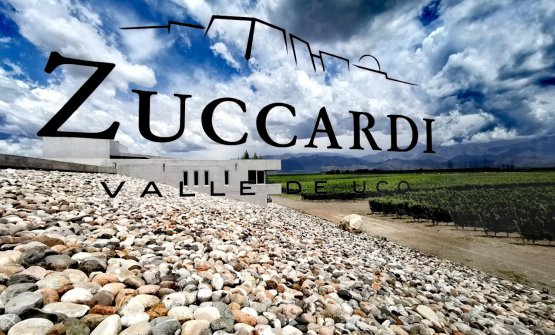 Zuccardi - Valle de Uco. They had to remove over one thousand trucks full of stones to plant the first vineyard at the Piedra Infinita estate