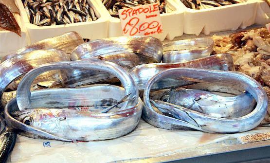 Pesce azzurro al mercato di Ortigia, Siracusa (foto Giovanni Dall'Orto). Di pesce sostenibile si è discusso nel corso di Cibo Nostrum, organizzato dalla Fic