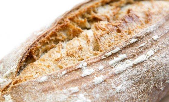 «Il profumo del pane appena sfornato, ecco uno dei ricordi che mi porto nel cuore legati alla mia infanzia. Quel cibo quotidiano nato da mani che racchiudono i segreti del sapere contadino, le stesse mani che roteando nell'aria e nella pasta creano e disegnano semplici e genuine opere d'arte»