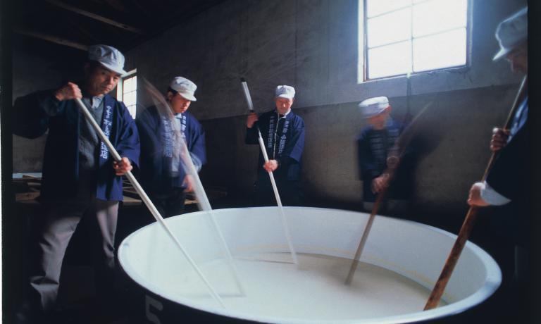 """Il processo di lavorazione dello shubo, lo""""starter"""" per la produzione di sake, poiché avvia il processo di fermentazione. E' composto di acqua, fermenti e una muffa nobile chiamata koji (Aspergillus oryzae). Questa muffa, penetrando nel chicco di riso cotto, trasforma gli amidi in zuccheri più semplici che potranno successivamente essere aggrediti dai fermenti per l'ulteriore trasformazione in alcol"""