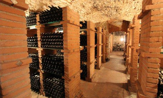 La raccolta delle bottiglie storiche dell'azienda
