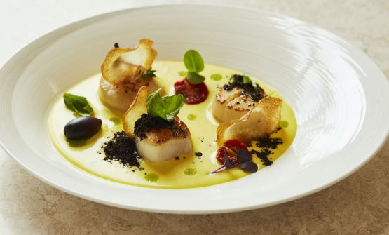 Scallops, saffron, potatoes and black olives