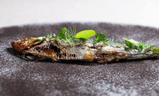 La Sarda BBQ, uno dei signature di Marco Acquaroli