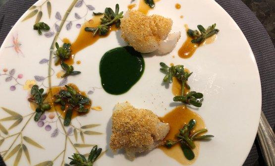 Merluzzo, polenta tostata, portulaca e salsa cassoeula