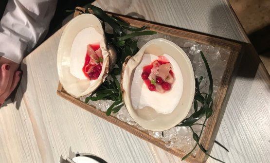 Mahogany clam: vongola cinquantenaria con mirtilli ghiacciati