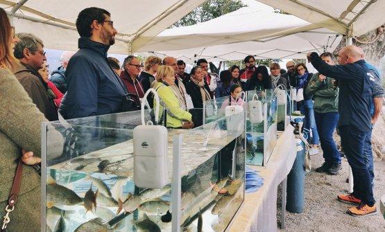 Uno dei momenti di approfondimento, con una lezione sui pesci autoctoni e alloctoni nei laghi e fiumi italiani